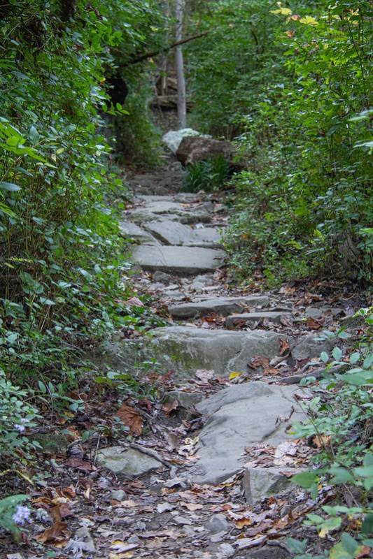 Lookout Mountain Hike12