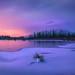 Canadian Rocky Autumn Series 9 - Vermilion Lake Before Sunrise