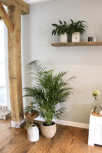 Houten balk woonkamer planten landelijk interieur