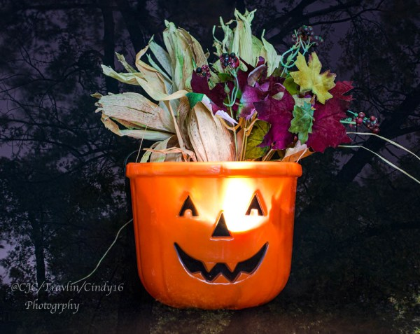 "DSC_6828-1   ~ ""#TREVOR CARPENTER PHOTO CHALLENGE 2019"" .... ~ ~ ""Week #44"" ~ ""WHEN HALLOWEEN WAS CANCELED"" ~ .... ~ 2020 ~."