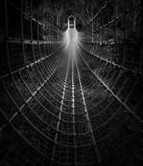 Rope Bridge, The Lost Gardens of Heligan