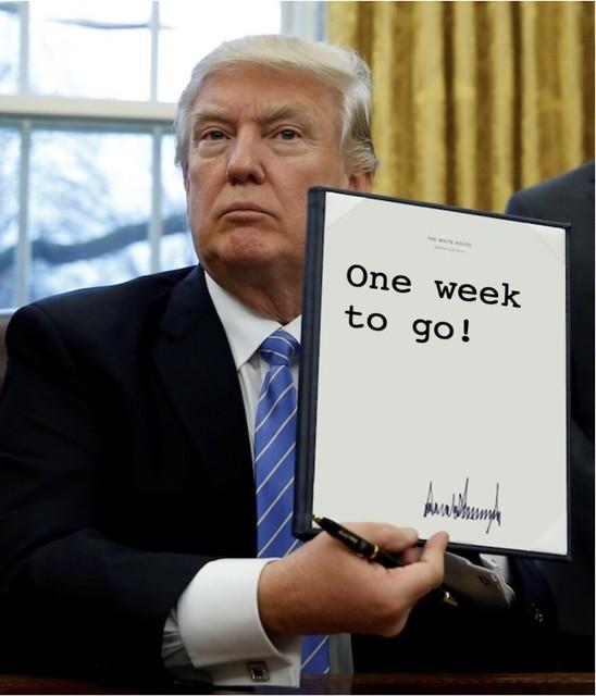 Trump_oneweek