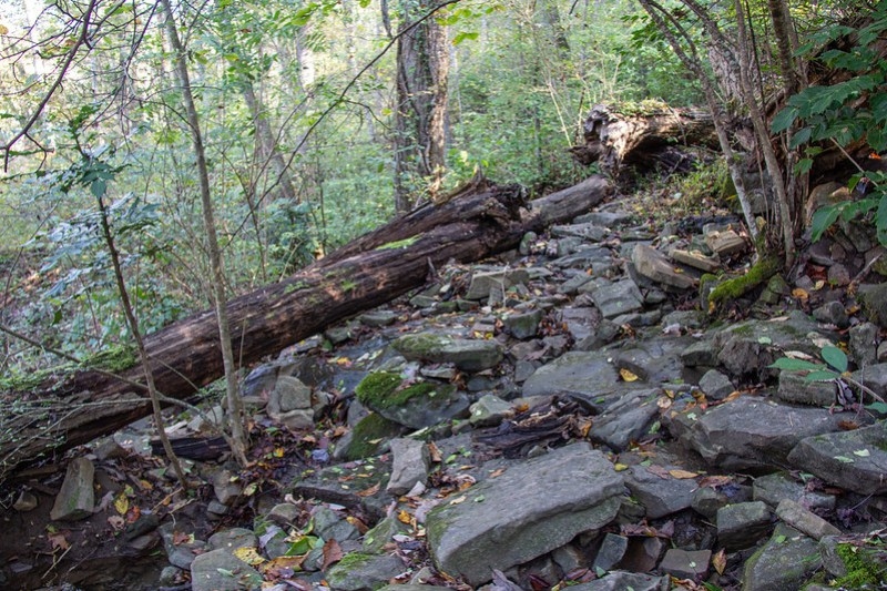 Signal Point Hike59