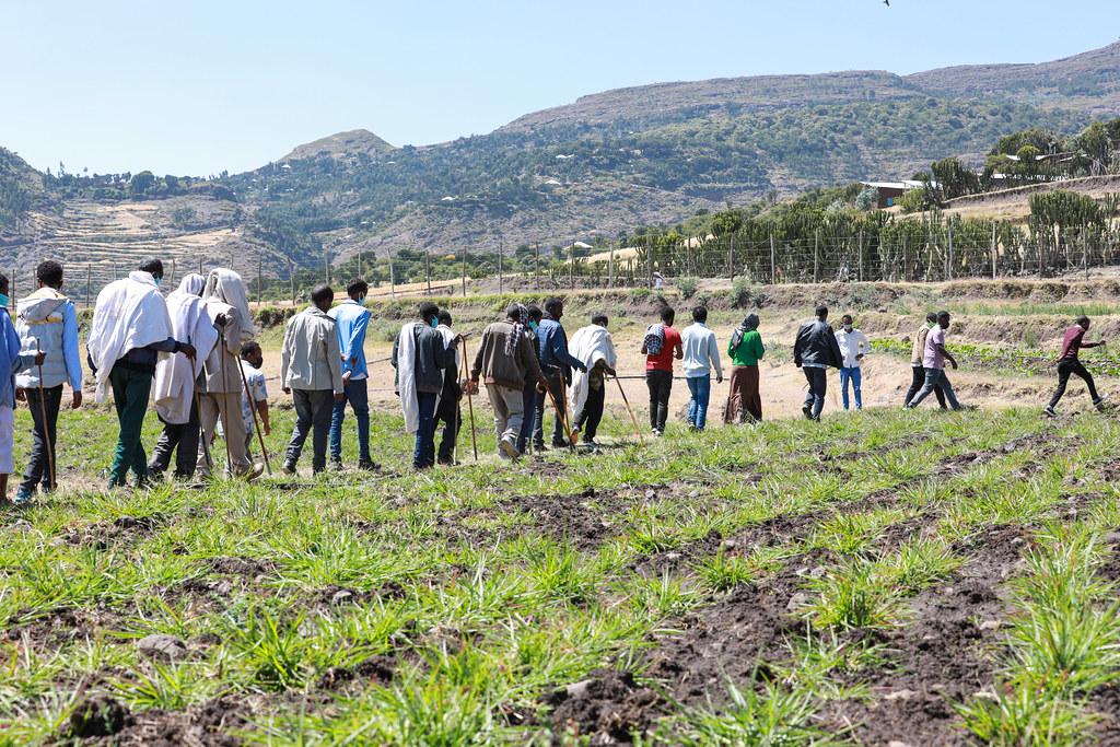Disho grass field visit at Raya university