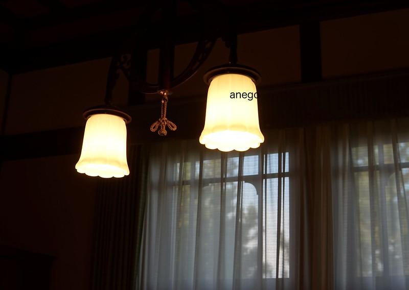奈良ホテル チューリップ