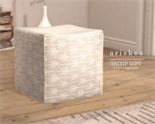 Ariskea November group gift!