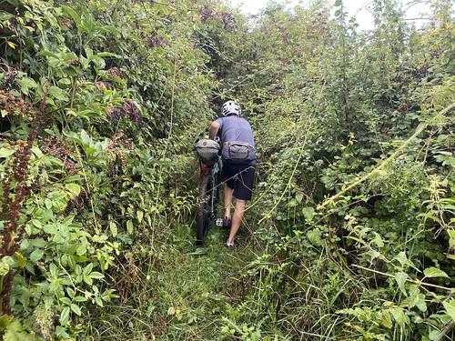 A so called bridleway near Wrantage