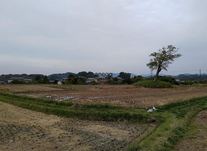 小墾田宮 飛鳥の田園