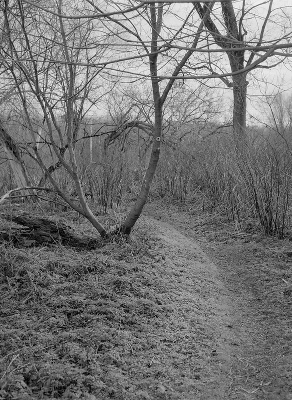 Grays Landing, Bend in the Path