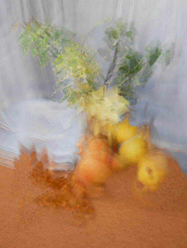 Week 48 Still Life Impressionism