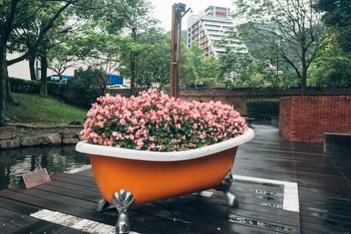 Flower bath in Jiaoxi, Yilan, Taiwan