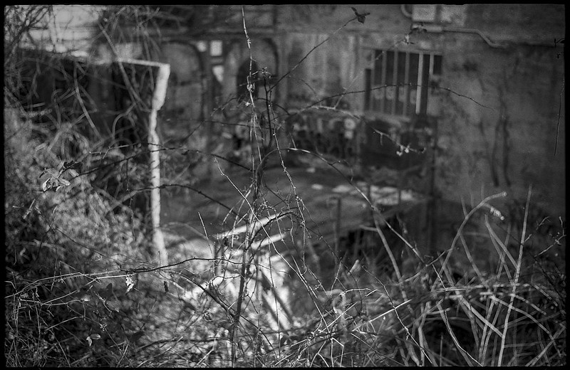 looking down, through the barren thicket, industrial architecture, abandoned, urban decay,  river district, Asheville, NC, Ansco Super Memar, Fomapan 200, Moersch Eco film developer, 12.8.20