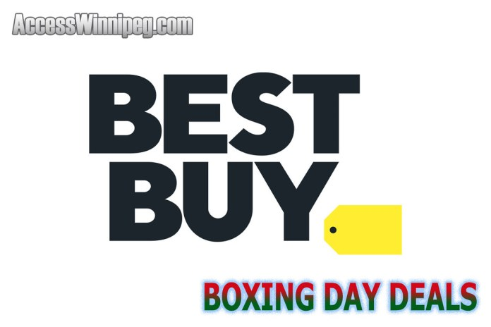 Best Buy Canada Boxing Day Deals 2020