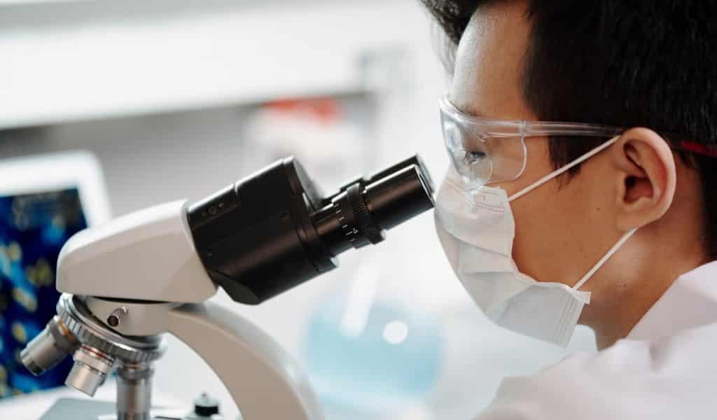 donner-aux-cellules-un-appétit-pour-les-virus