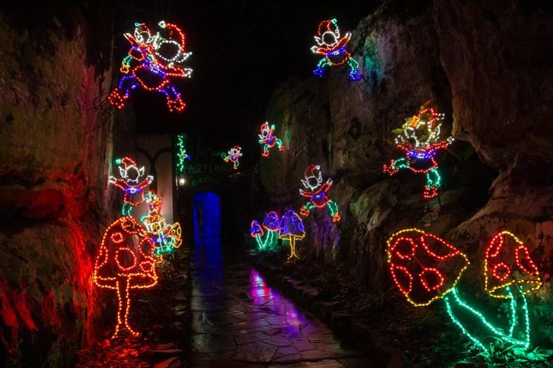 Enchanted Garden of Lights66