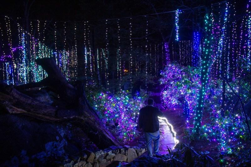 Enchanted Garden of Lights33