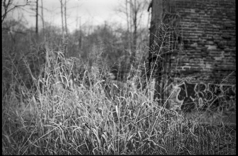 old brick mill, abandoned, surrounding winter landscape, dusk, River District, Asheville, NC, Minolta XG-M, Super Albinon 28mm f-2.8, Ilford XP4+, Moersch Eco film developer, 12.17.20