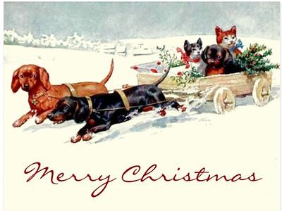 vintage_christmas_dachshund_dogs_n_cats_postcard-r273776f00960430e878a2120b9a35429_vgbaq_8byvr_630
