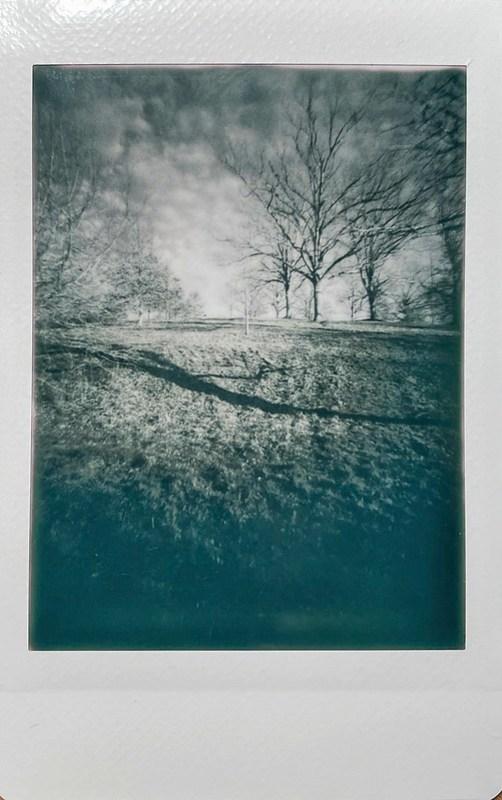 winter landscape, uphill, bare trees, elongated cast shadow, patterned coulds, near dusk, Biltmore Estate, Asheville, NC, Lomo'Instant, Instax Mini Monochrome film, 12.29.20