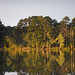 Wateree Reflection_1000