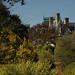 Biltmore View_1000