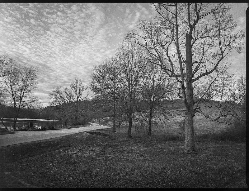 winter landscape, near dusk, bare trees, speckled sky, roadway, lagoon, Biltmore Estate, Asheville, NC, Mamiya 645 Pro, mamiya sekor 45mm f-2.5,  Fomapan 400, HC-110 developer, 12.29.20