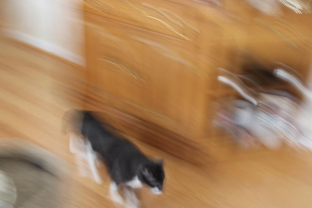 Motion blur