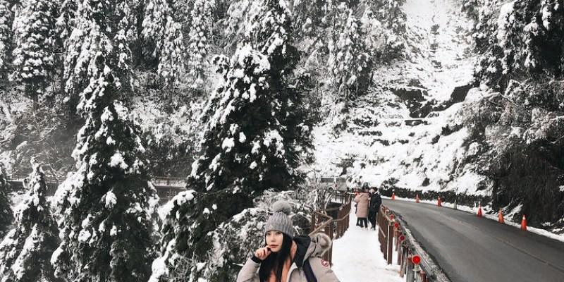 見晴古道追雪穿搭簡單分享 + 對折Dolce & Gabbana水鑽蕾絲高跟鞋