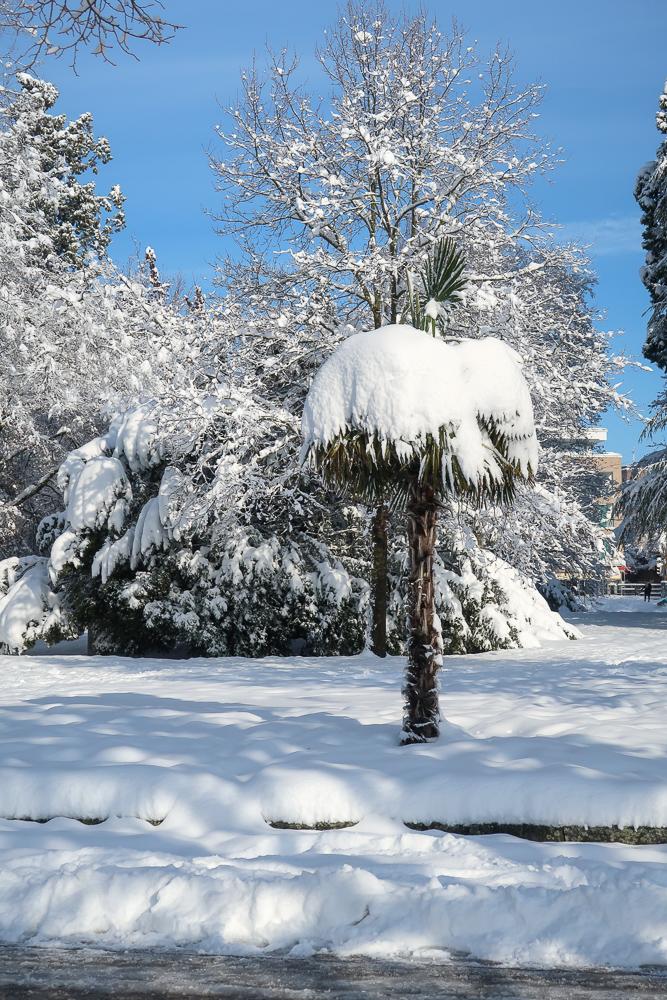 Sightseeing Walk Snow Lake Constance Friedrichshafen January 2021 Blog JoyDellaVita-29
