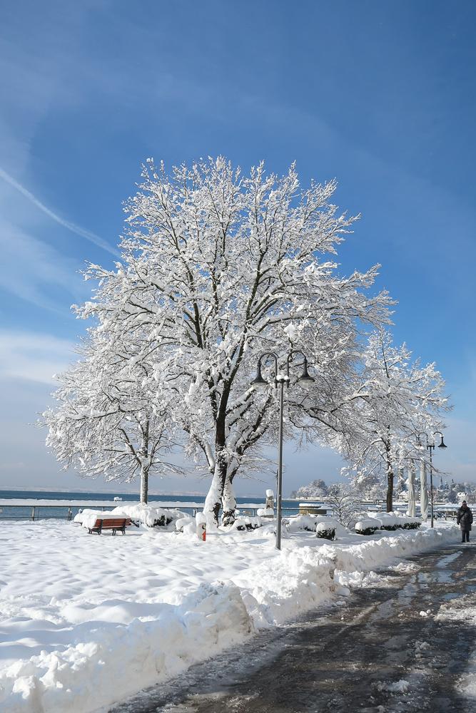 Sightseeing Walk Snow Lake Constance Friedrichshafen January 2021 Blog JoyDellaVita-11