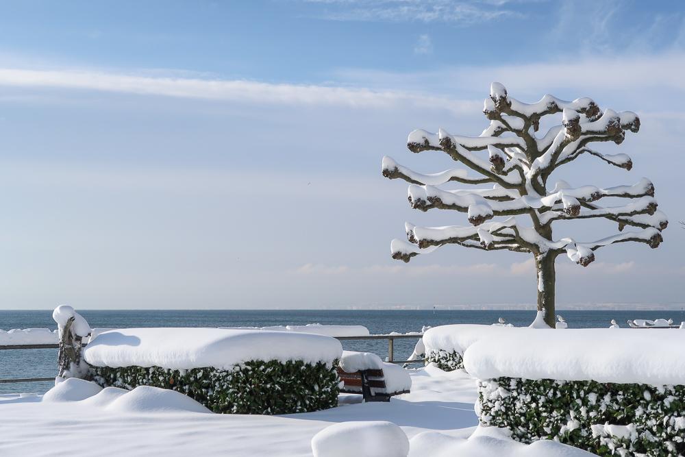 Schnee Spaziergang Friedrichshafen am Bodensee Januar 2021 hyyperlic-14
