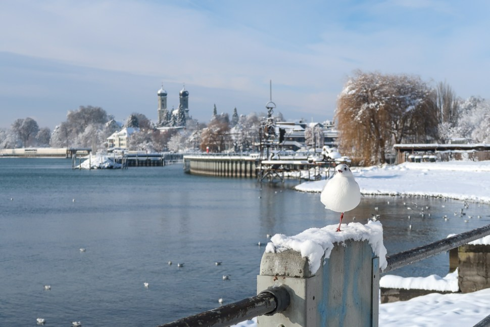 Sightseeing Walk Snow Lake Constance Friedrichshafen January 2021 Blog JoyDellaVita-30