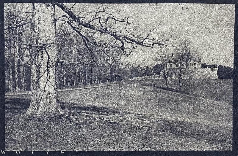 coffee-toned version, cyanotype, landscape, BIltmore Estate, Asheville, NC, 6x9 negative shot with an Ercona II medium format folding camera