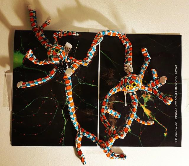 Synapses - deux sculptures en tissu neuronales connectées par des scratchs - Photo INSERM/Boudin, Hélène/Le Berre-Scoul, Catherine/U913/IMAD