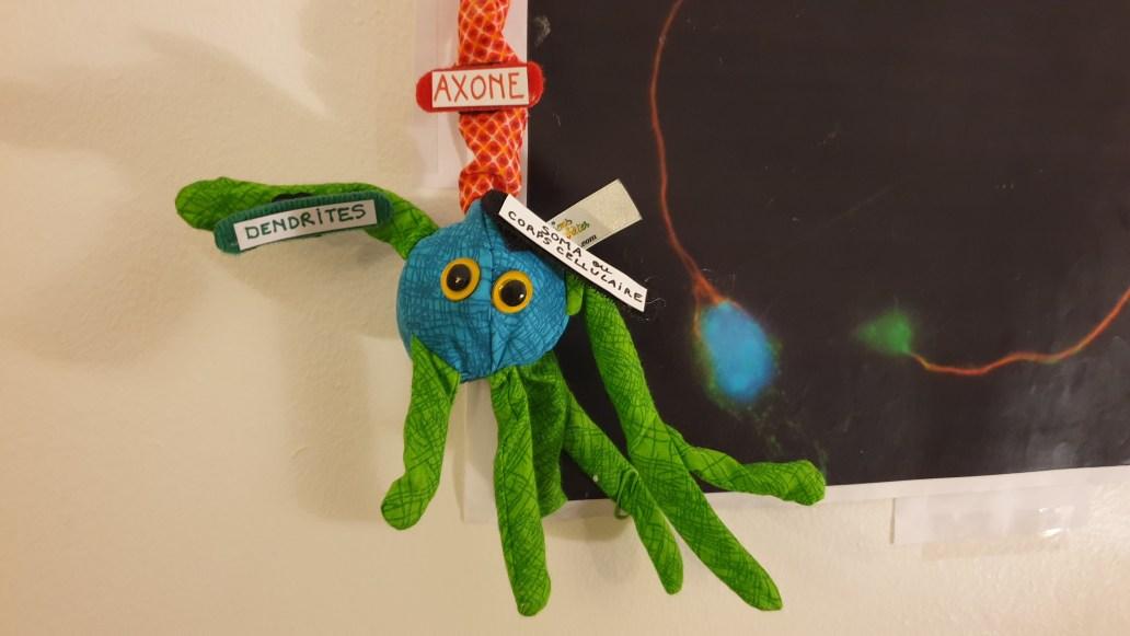 2. Neurone tricolore moteur - sculpture en tissu