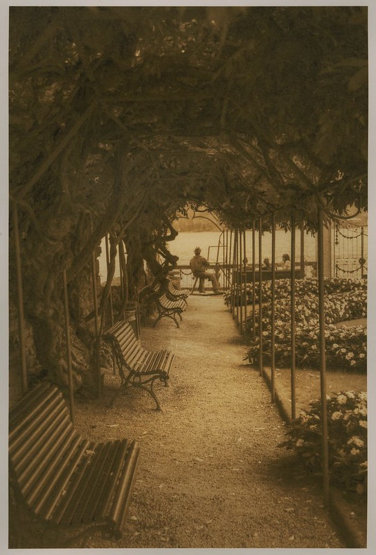 Lakeside Arbor, Orta San Guilio (Lith Print)