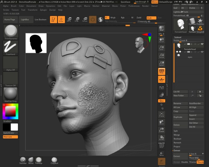 Working with Pixologic ZBrush 2021.6.2 full