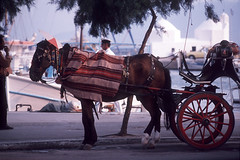 1992.04.07-4 Egina