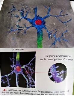 Neurone pyramidal bleu aux épines dendritiques faites de sable - Création élève intervention collège Jean Monnet, Saint Jorioz, 2018.