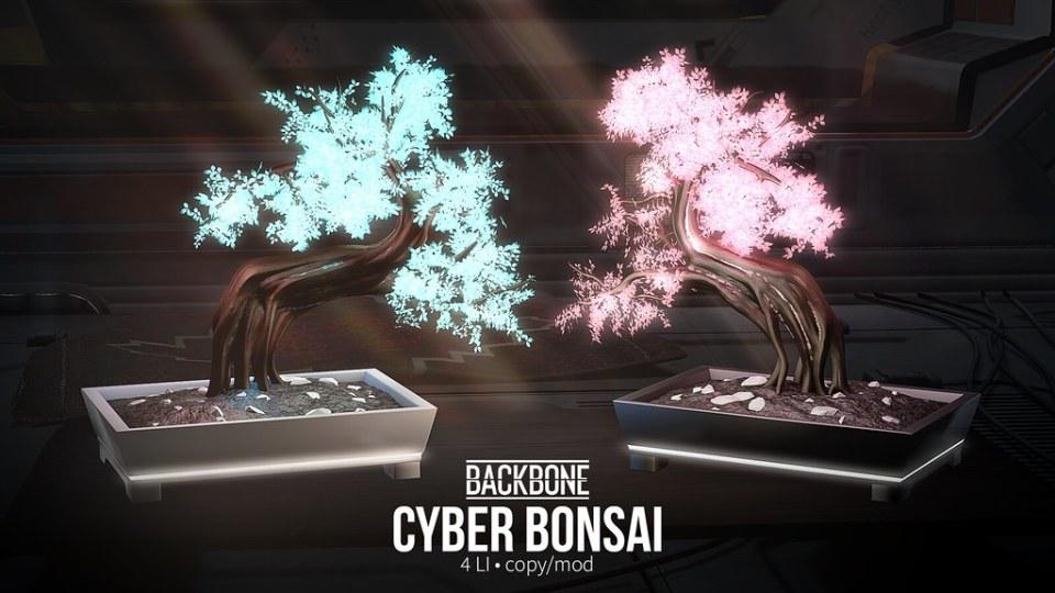 BackBone Cyber Bonsai