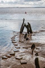 Vicky Dock buoy