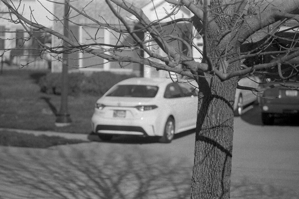 Car behind a tree