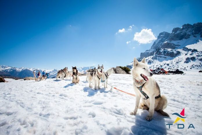Mushing-Partacua 狗拉雪橇 by 阿拉贡大区旅游局 庇里牛斯山