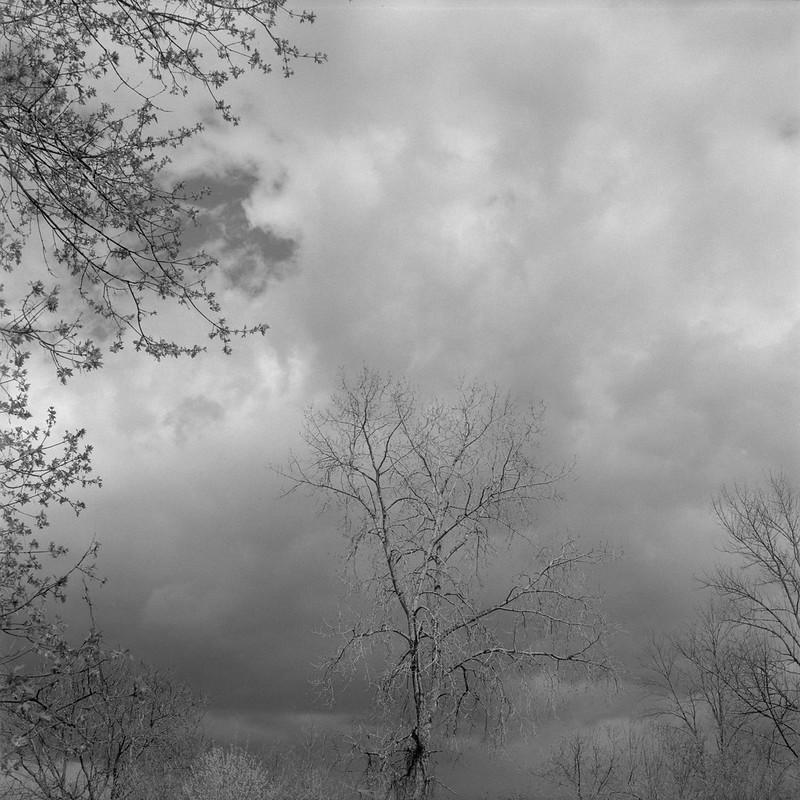 Spring, Grays Landing 5