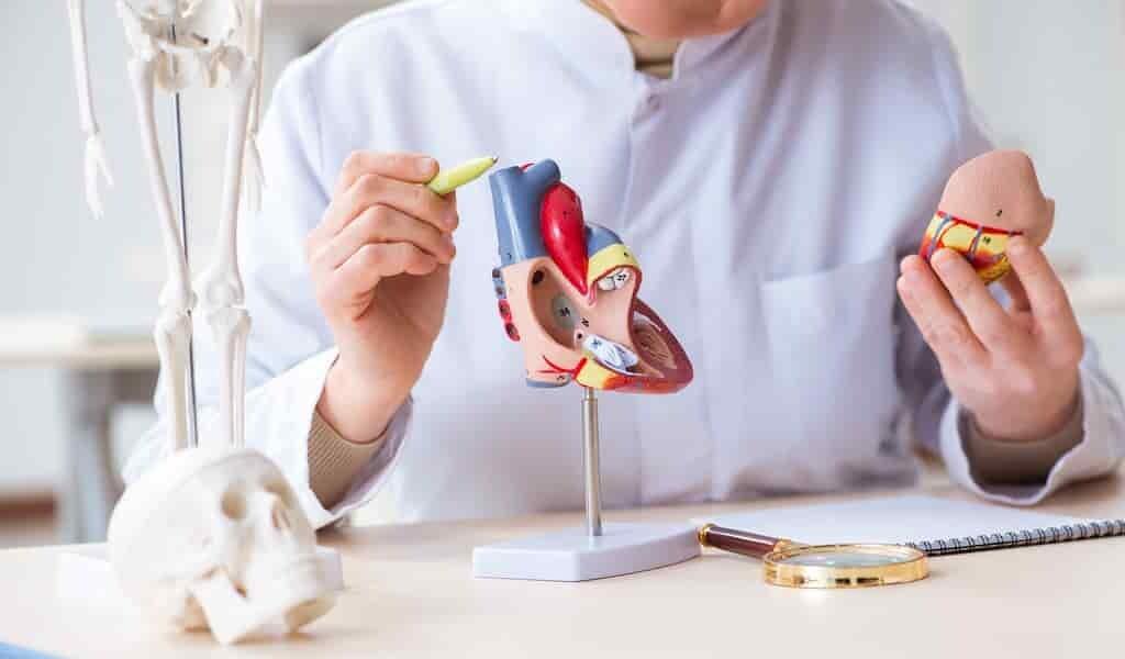 détecter-les-troubles-cardiaques-chez-les-diabétiques