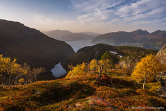 Autumn colours in Norway
