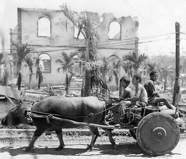 Boys Karabao Cart