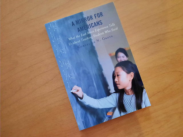 A Mirror for Americans ~ Book Review #MySillyLittleGang