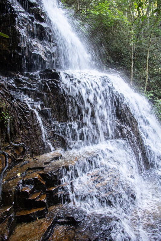 Benton Falls Trail26
