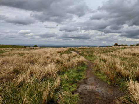 Disley to Lyme and back